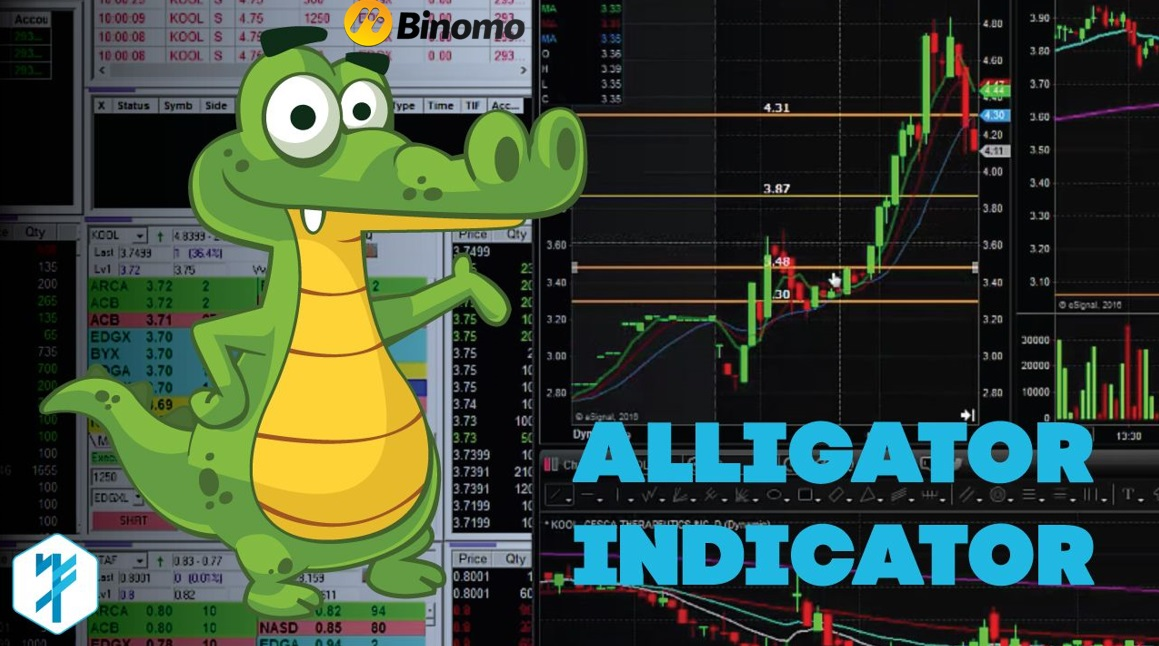 How To Use The Alligator Indicator For Trading In Binomo